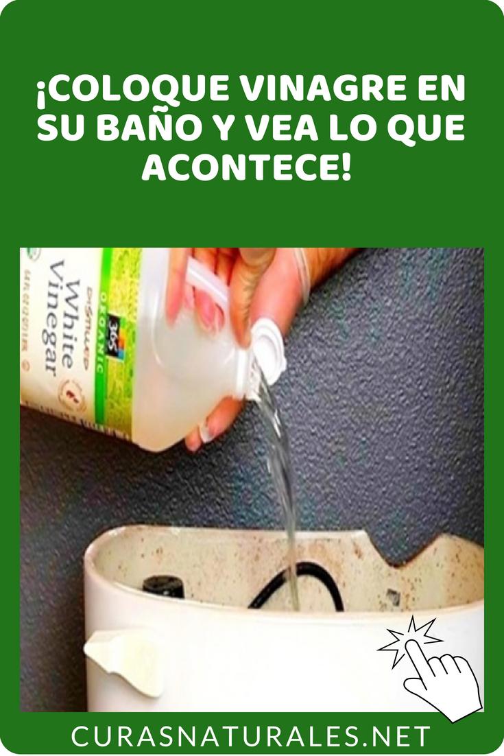 4 Formas De Limpiar El Baño Con Vinagre Blanco Aprenda Ahora