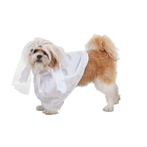 Pin De Disfracesenlanube Es En Disfraces Para Perros