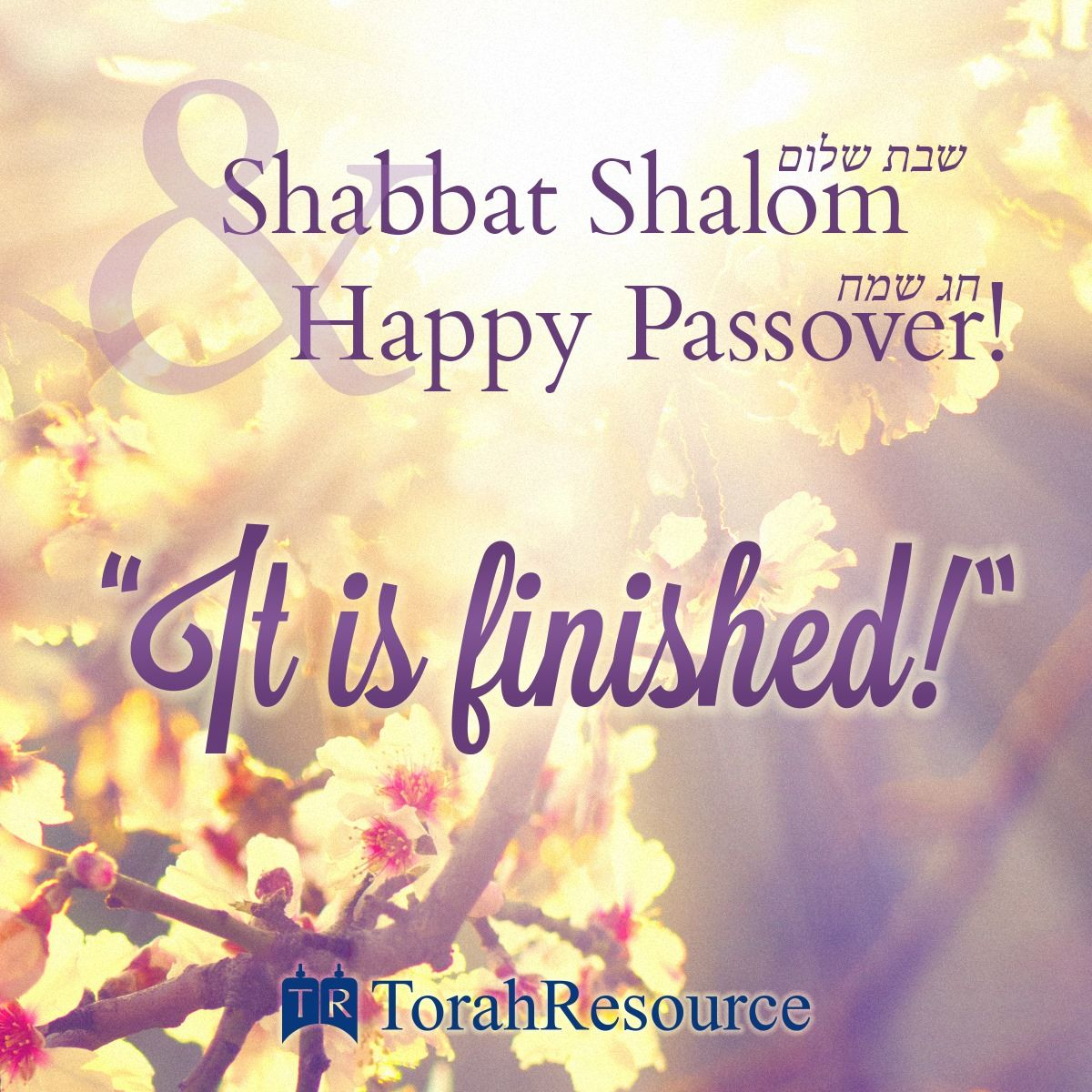 Image result for shabbat pesach images