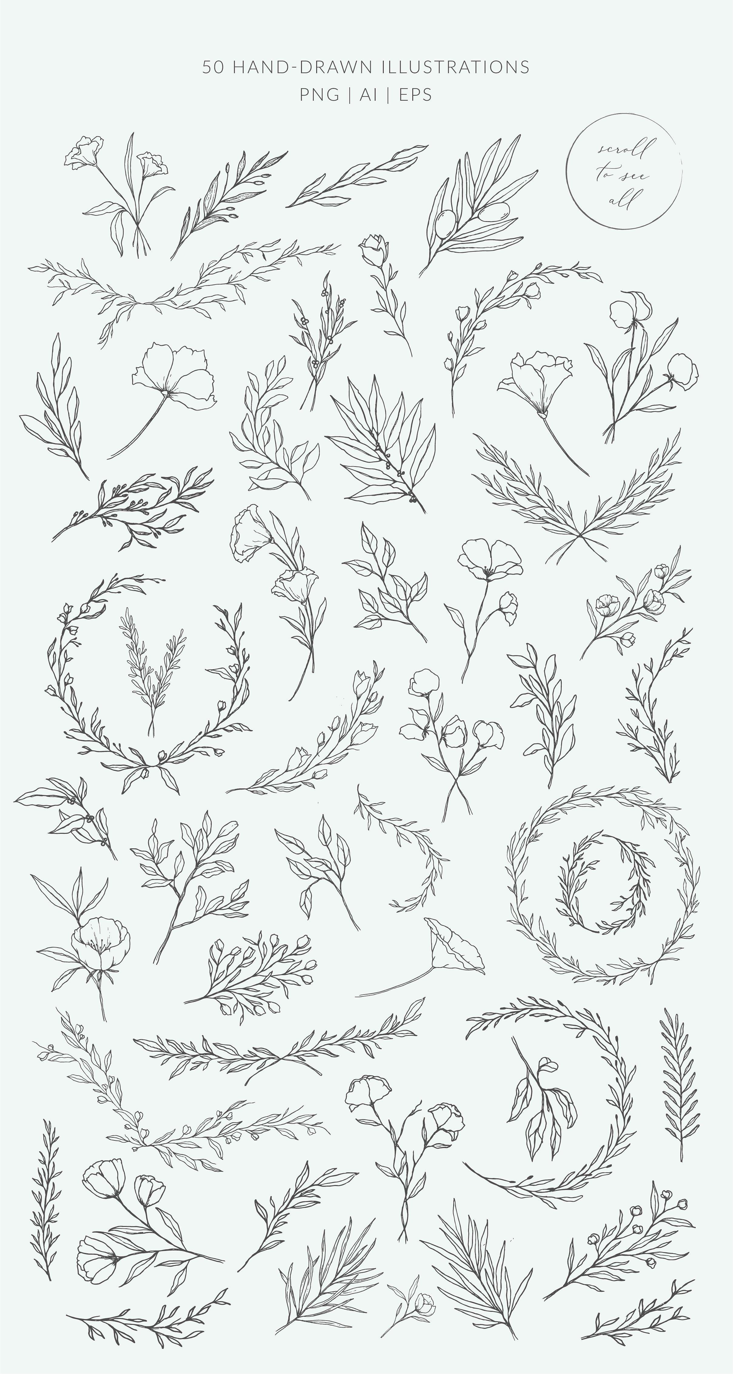 Botanical Logos Illustrations Floral Drawing Floral