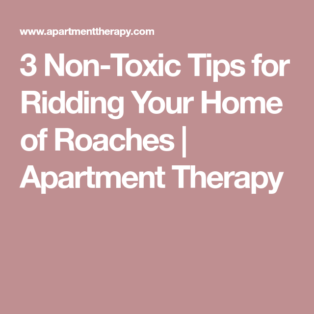 3 Non-Toxic Tips For Ridding Your Home Of Roaches