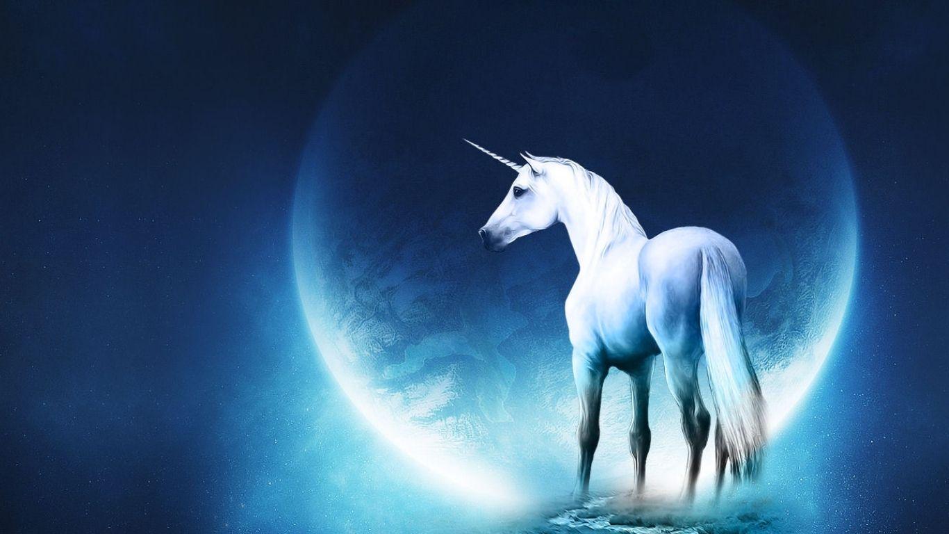 Best Wallpaper Horse Unicorn - 41a232d9e5c9a55580331b59318da562  Pic_288495.jpg