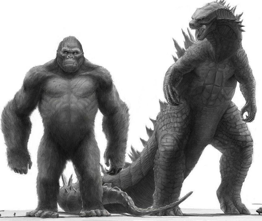 Godzilla And Kong Size Comparisons Monsterverse Kong Godzilla King Kong Vs Godzilla Godzilla Vs