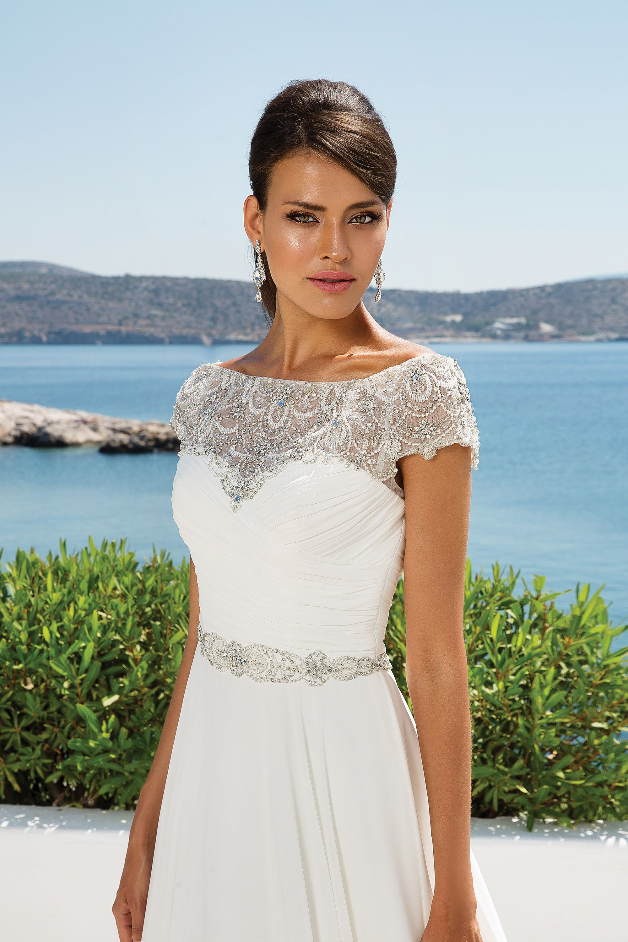 Gorgeous! Chiffon ball gown with beaded embroidery and portrait ...