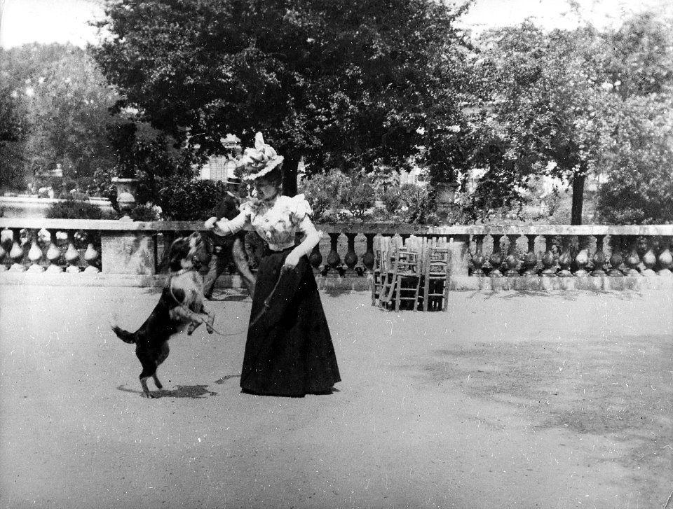 une femme jouant avec son chien au jardin du luxembourg 1893 dogs through time pinterest. Black Bedroom Furniture Sets. Home Design Ideas
