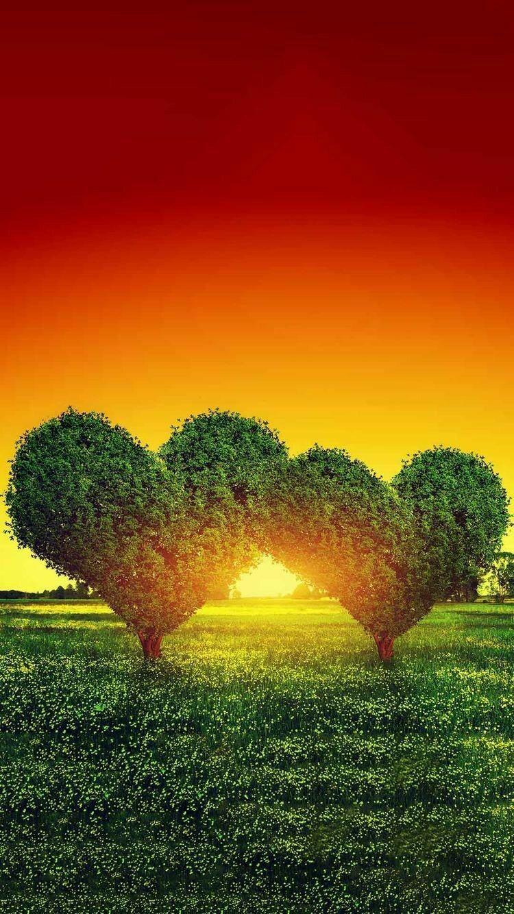 Heart Trees Beautiful Nature Heart In Nature Love Heart
