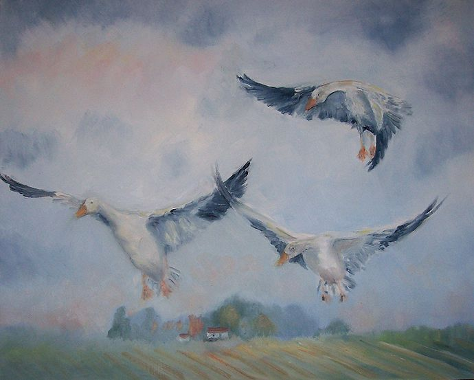 Wild Geese that Fly http://wildgeesethatfly.com