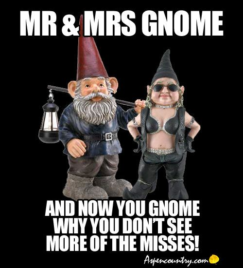41a5c21724cf6e2f89269e5442402a01 mr & mrs gnome memes and now you gnome why you don't see more of