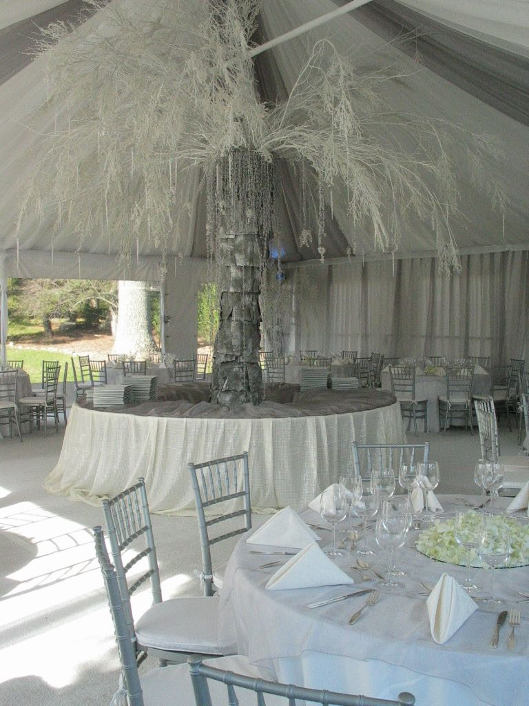 Wedding Tent With A Spay Painted White Tree Wow Wedding