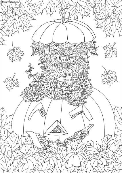 Cats And Dogs Dog In A Pumpkin Halloween Coloring Pages