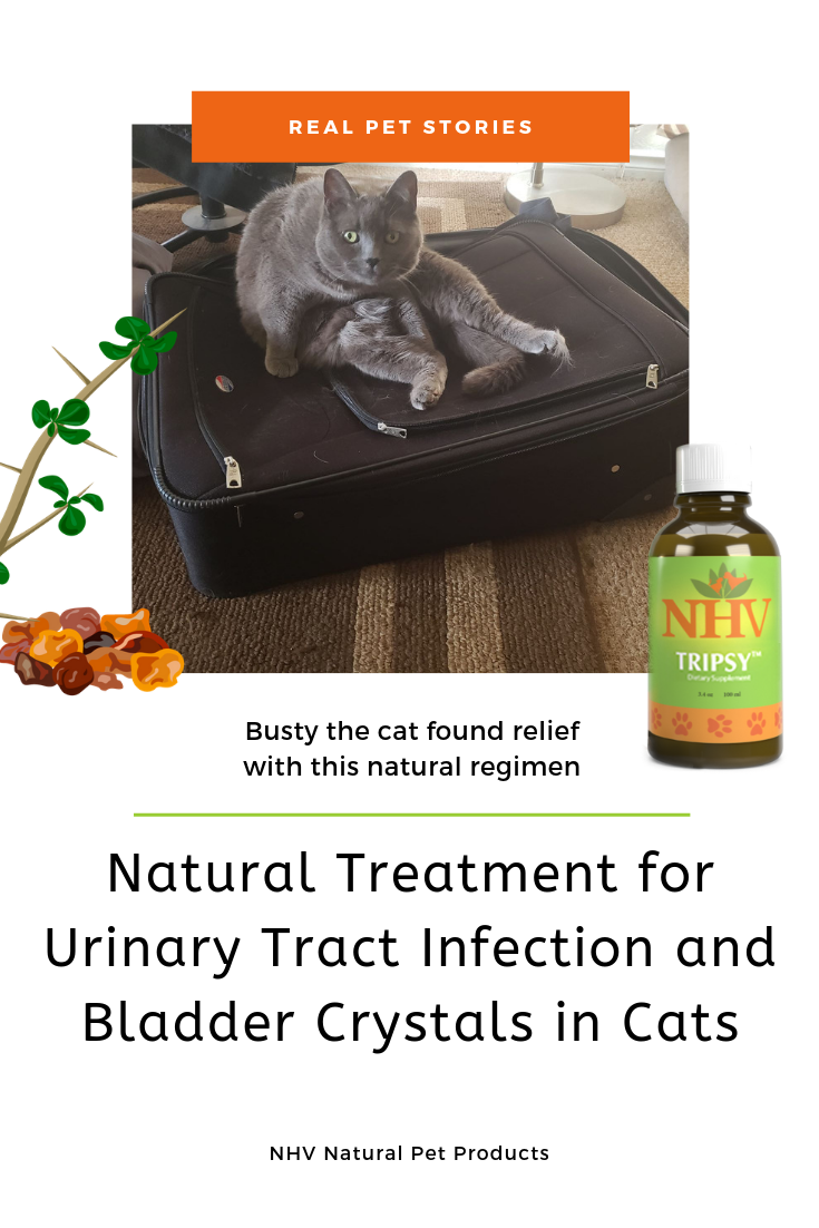 Supporting Urinary Tract Infection and Bladder Crystals in