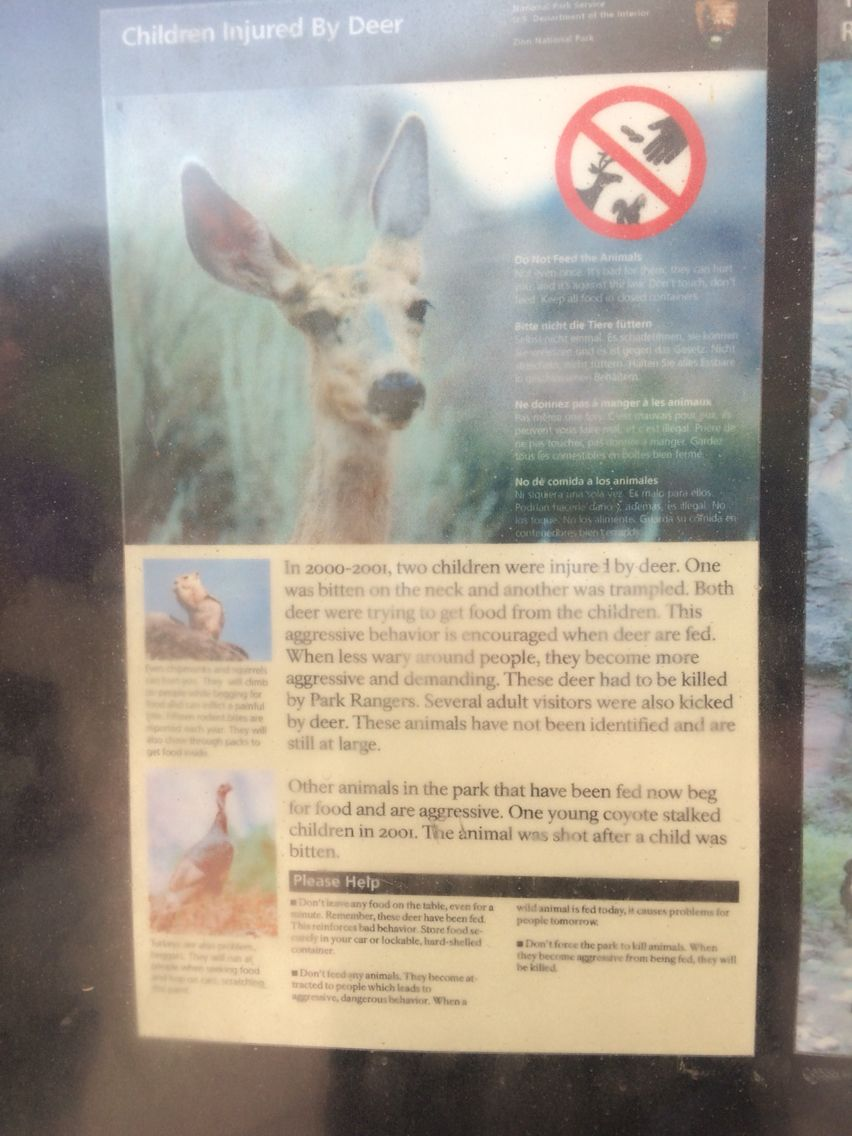 Some kids were attacked in Zion and if you read the entire poster you'll see these malicious deer are still at large.