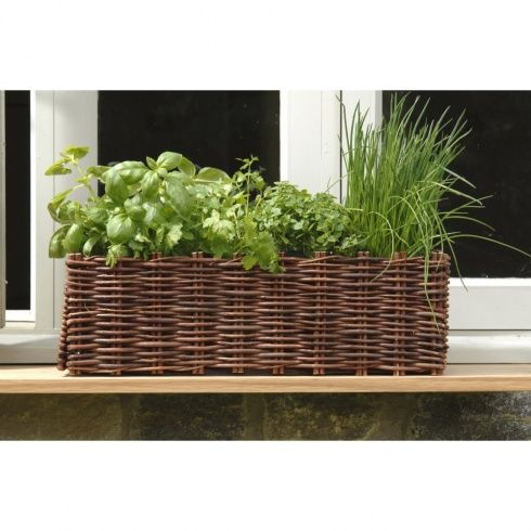 Wicker Flower Box For Outside Our Kitchen Window Plant Lavender