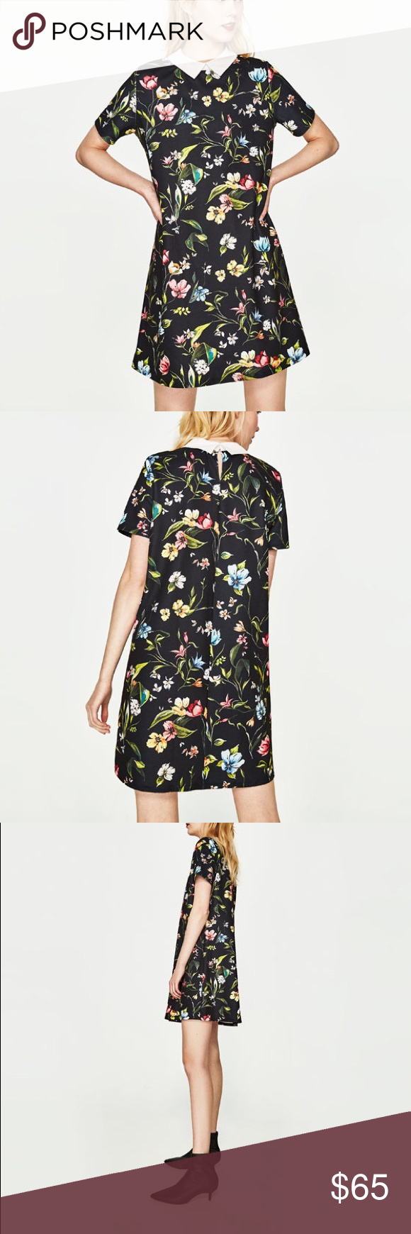 Zara Floral Print Dress With Shirt Collar Nwt My Posh Closet