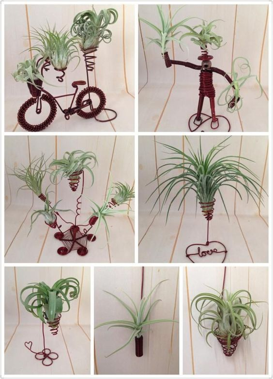 20 air planting Art ideas