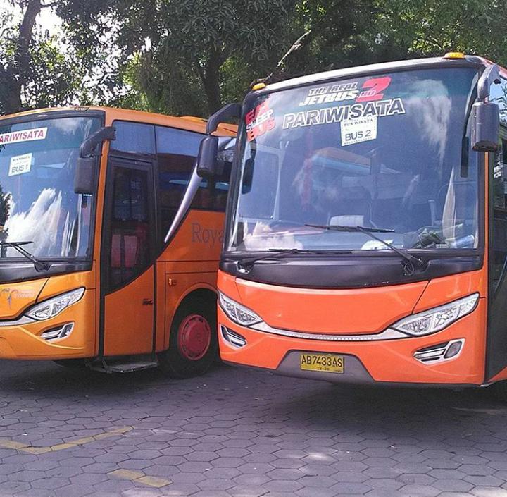 Bus Wisata Jogja Seat 50 Pariwisata, Mobil