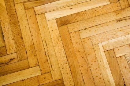 Cleaning Pet Urine Odor From Hardwood Floors Cleaning
