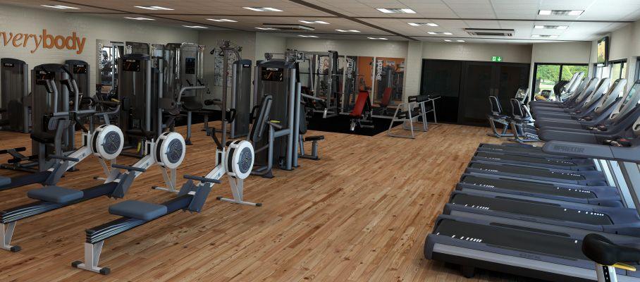 Gym Visualisation Gym, Sports