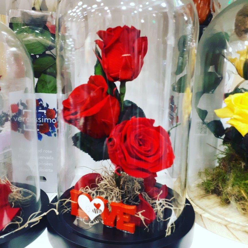 Αποχυμωμενα τριαντάφυλλα σε γυάλινο θόλο που κρατούν για