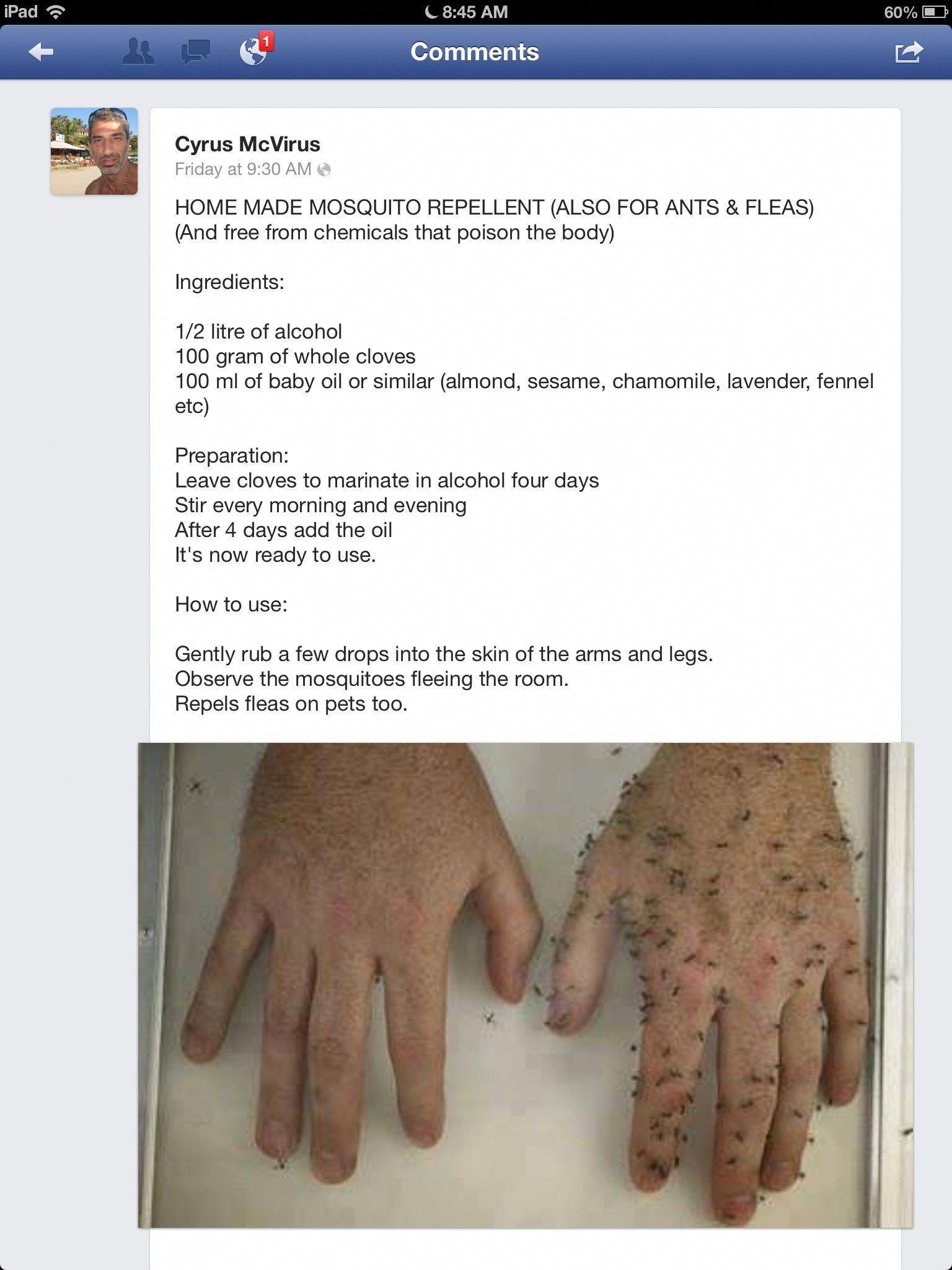 Photo of Hausgemachte Mückenschutzmittel und Heilmittel Übung #bestpestcontrolproductf …