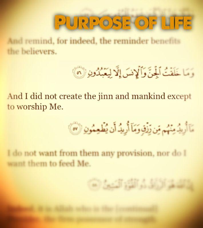Purpose Life God Allah Islam Quran Quran Verses Quran Quotes Islamic Quotes