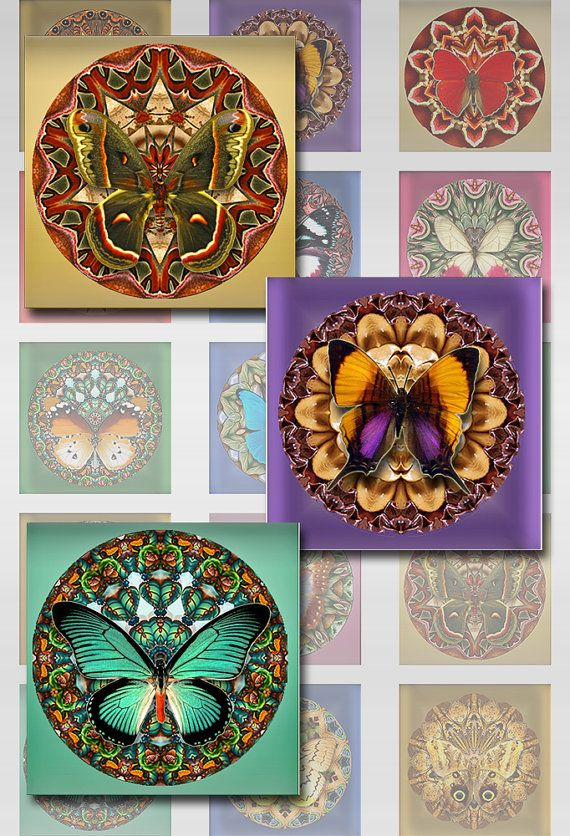 Butterflies Flower Mandala Digital Images Squares by pixeltwister, $3.99