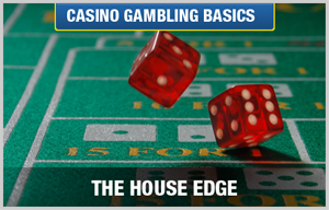 Casino gambling for beginners casinodigital net cpanel