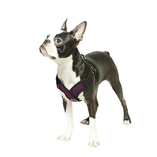 Gooby Choke Free Step-In Comfort Dog Harness, Purple, X-Large -- You can get additional details at the image link.