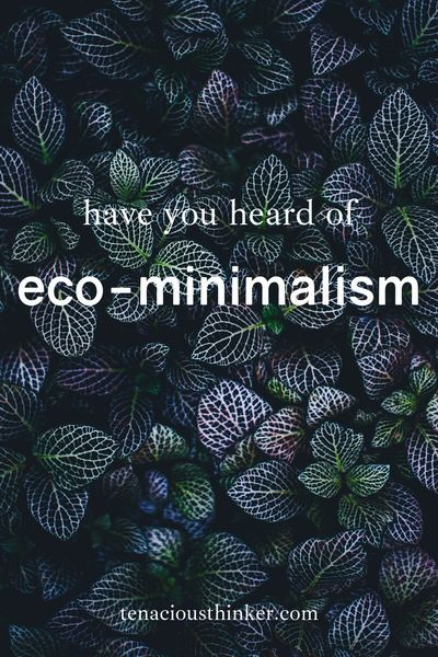 In this in-depth introduction to Eco Minimalism, we discuss the development of the movement that started as a set of principles to designing buildings with minimal environmental impacts to a lifestyle like zero-waste. Eco-minimalism can be described as using less resources while taking care of yourself and your community. #environmentallyfriendly #environmentalist #Environmentalism #ecoconscious #EcoLiving #EcoFriendly #ecolife #ecowarrior #ecolifestyle #ecoblogger #greenliving #ecominimalism