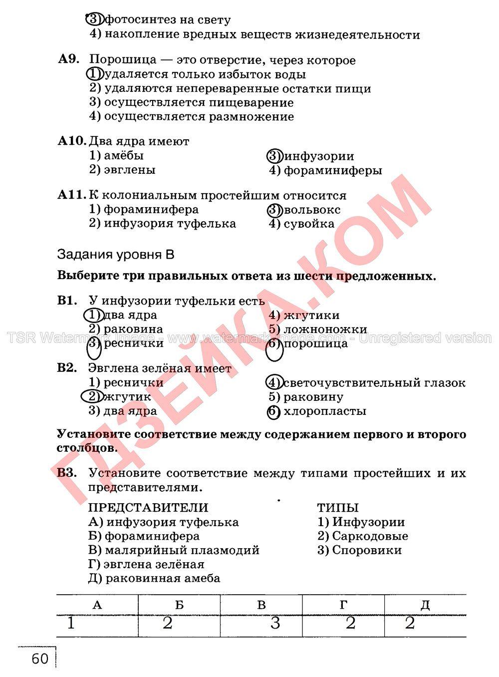 Перевод из англиского на руский на 8 класс the houses of parliament