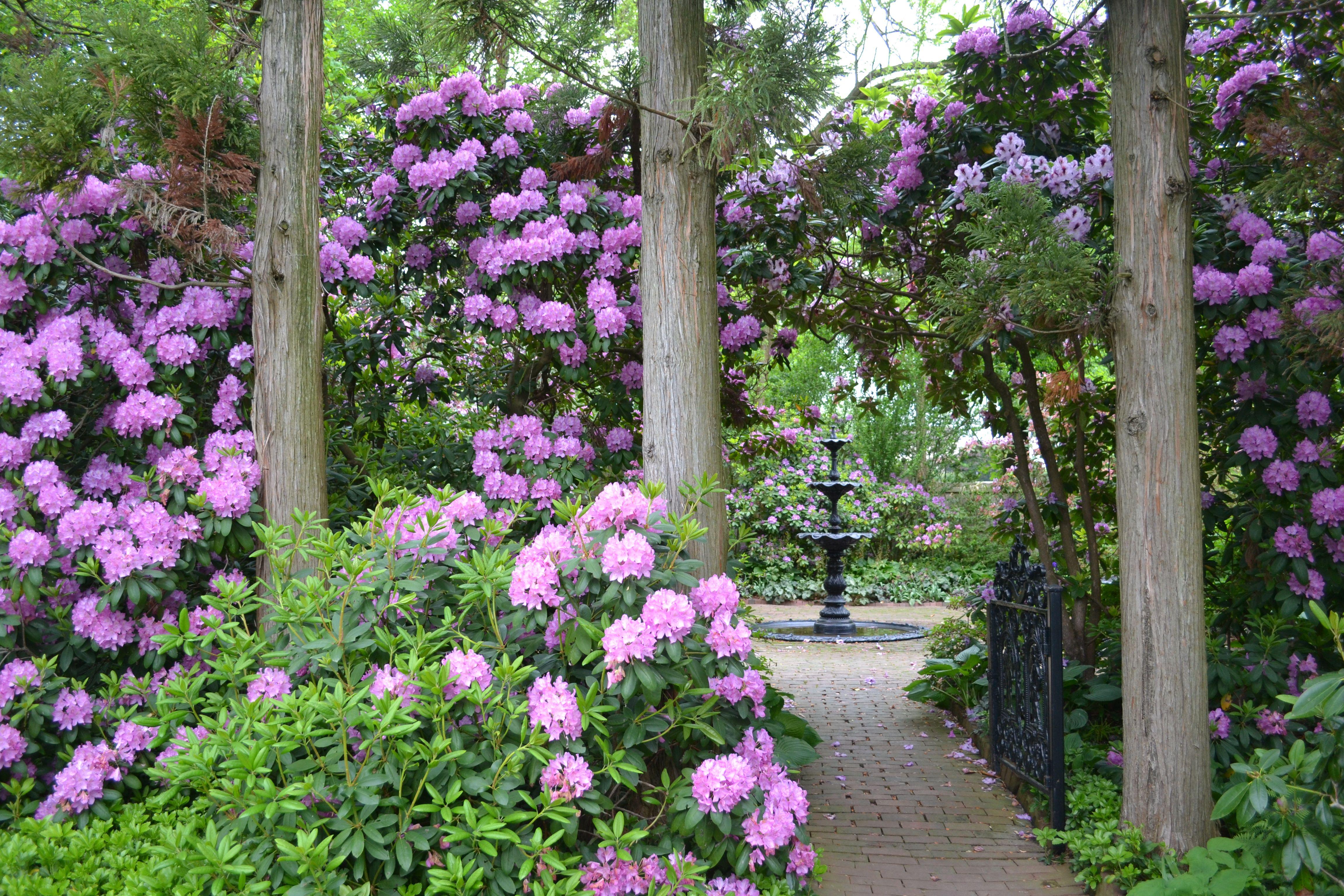 The Victorian Garden Victorian gardens, Garden room, Garden