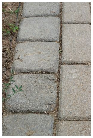 Concrete Patio Pavers Made Into A Beautiful Sidewalk! Learn How To Update  Pavers With Stain!