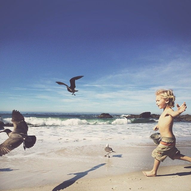 """""""Never ever give up Hooper! @thestorkandthebeanstalk meeting in paradise for a little play date with the littles. Such a great morning at the beach."""""""
