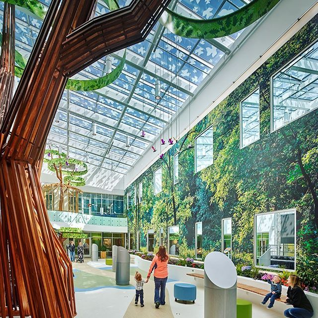 The New Beacon Children S Hospital Features A Central Atrium With Movie Screen Forest Mural Wall To Planter Box And Whimsical Tree Sculpture