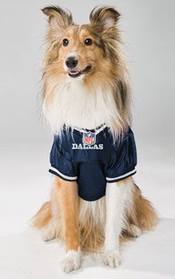 size 40 ec31d a90cb Dallas Cowboys Dog Jersey. Murph would look so handsome ...