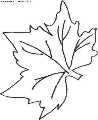 rsultat de recherche dimages pour dessin de feuille - Dessin De Feuille