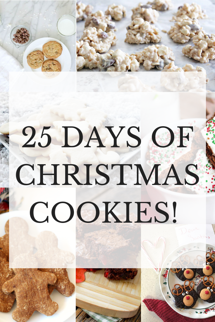 25 Days And Recipes Of Christmas Cookies Holiday Ideas Easy
