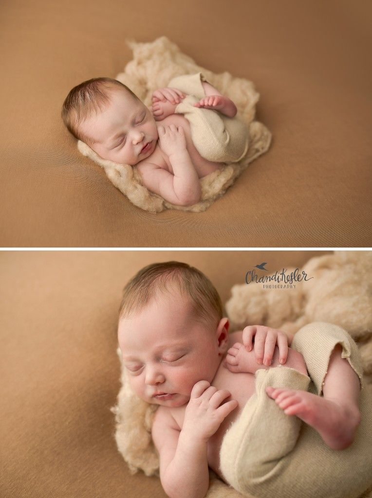 Newborn posing newborn beanbag posing chandi kesler photography best central il newborn photographer