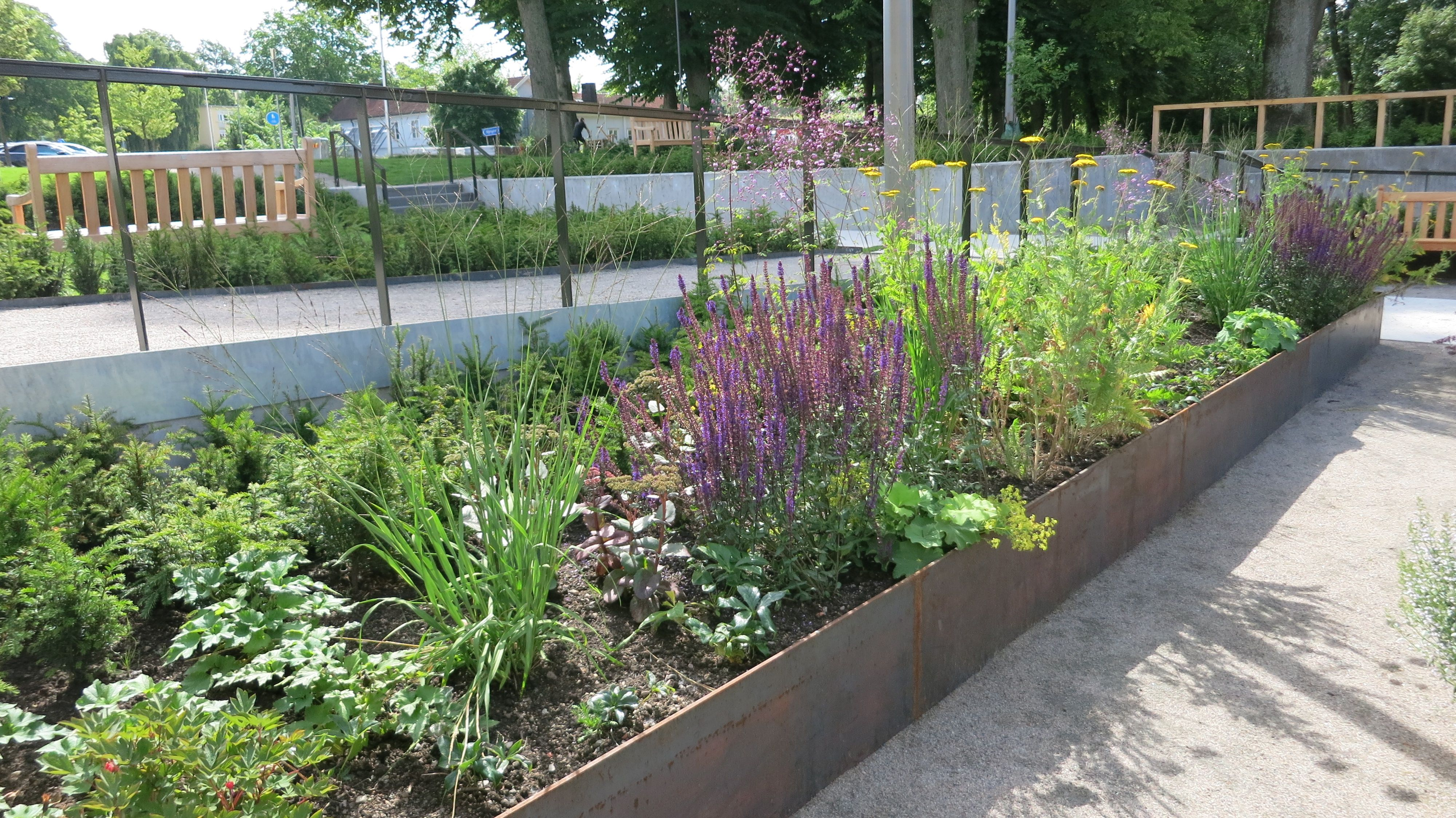 Mixed Border Elevated In 30 Inch Deep Planter Box Public Space