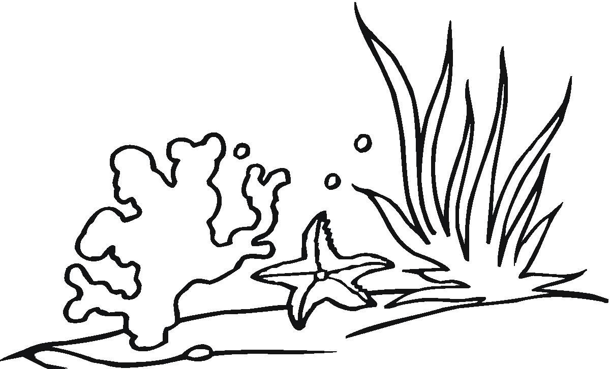 Seaweed Coloring Pages Clipart Best Clipart Best Coloring