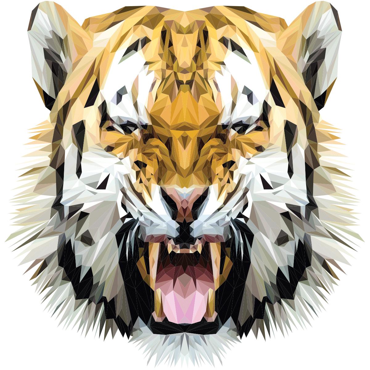 Resultat De Recherche D Images Pour Origami Tigre Blanc Dessin