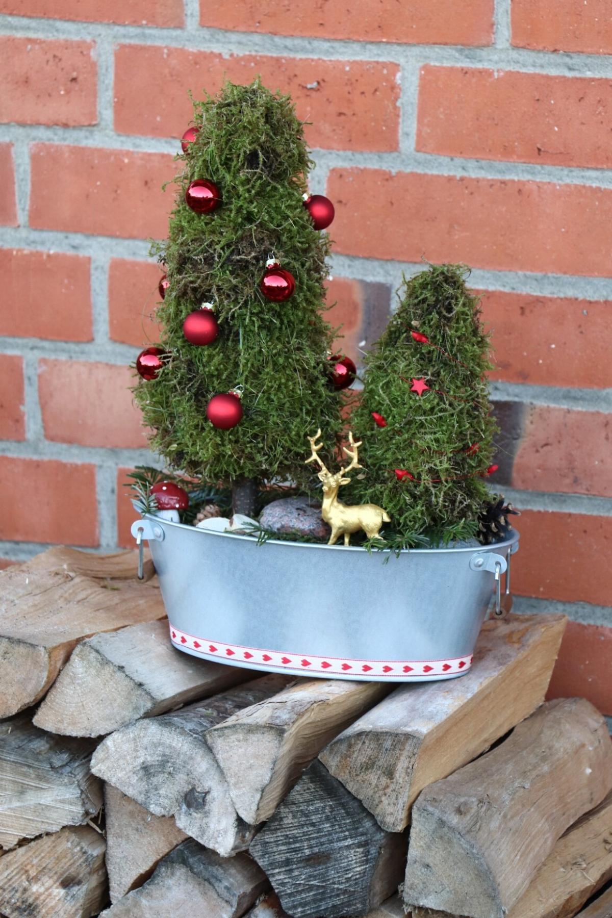 Moos Tannenbaume Diy Fur Ein Adventsgesteck Lavendelblog Adventsgesteck Gestecke Naturmaterialien