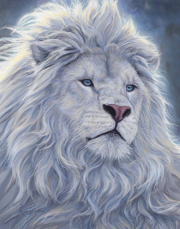 White Lion Art Print by Lucie Bilodeau