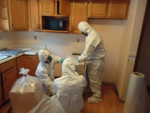 Kitchen Mold Removal Check More At Https Rapflava 7167