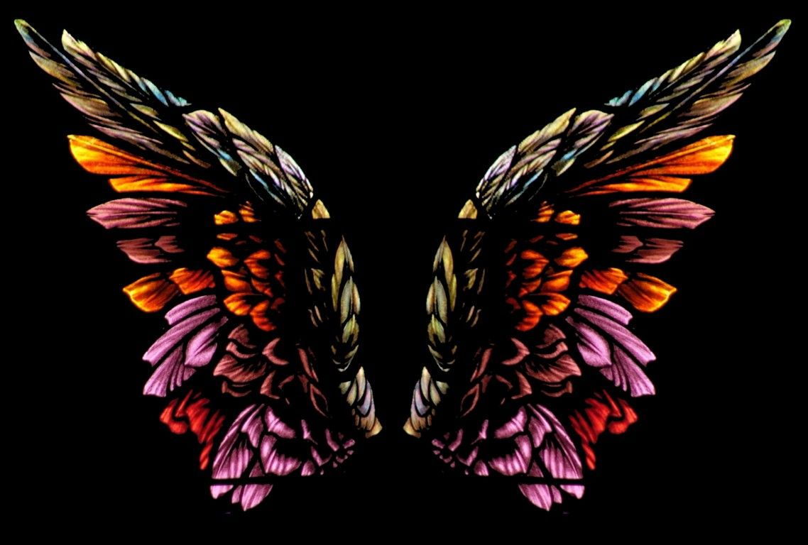 Angel Wings Pictures Wings Wallpaper Download The Free