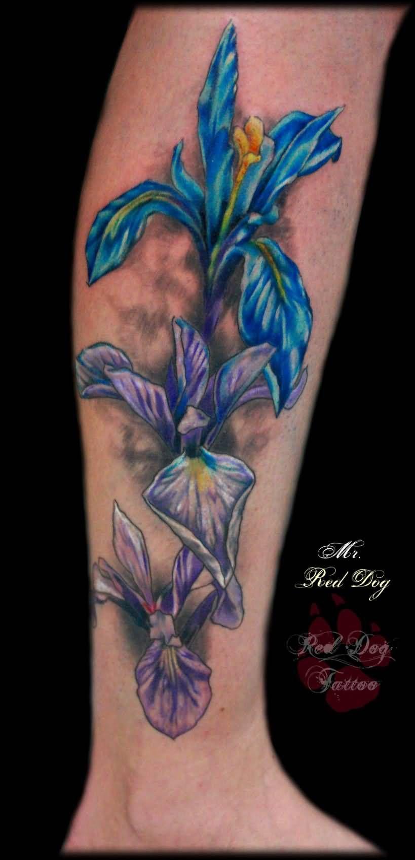 Colored 3d iris tattoo on leg tattoo pinterest iris tattoo colored 3d iris tattoo on leg izmirmasajfo Images