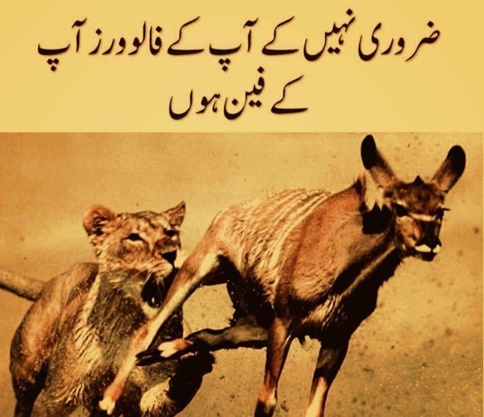 Hahahaha Samjheyyy Word Z 3 Urdu