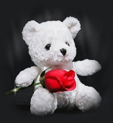 Teddy with a rose splash of color pinterest colour splash top cute teddy bear wallpaper for happy teddy day teddy image wallpapers wallpapers thecheapjerseys Image collections