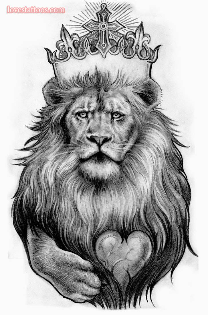 lion tattoo sketch
