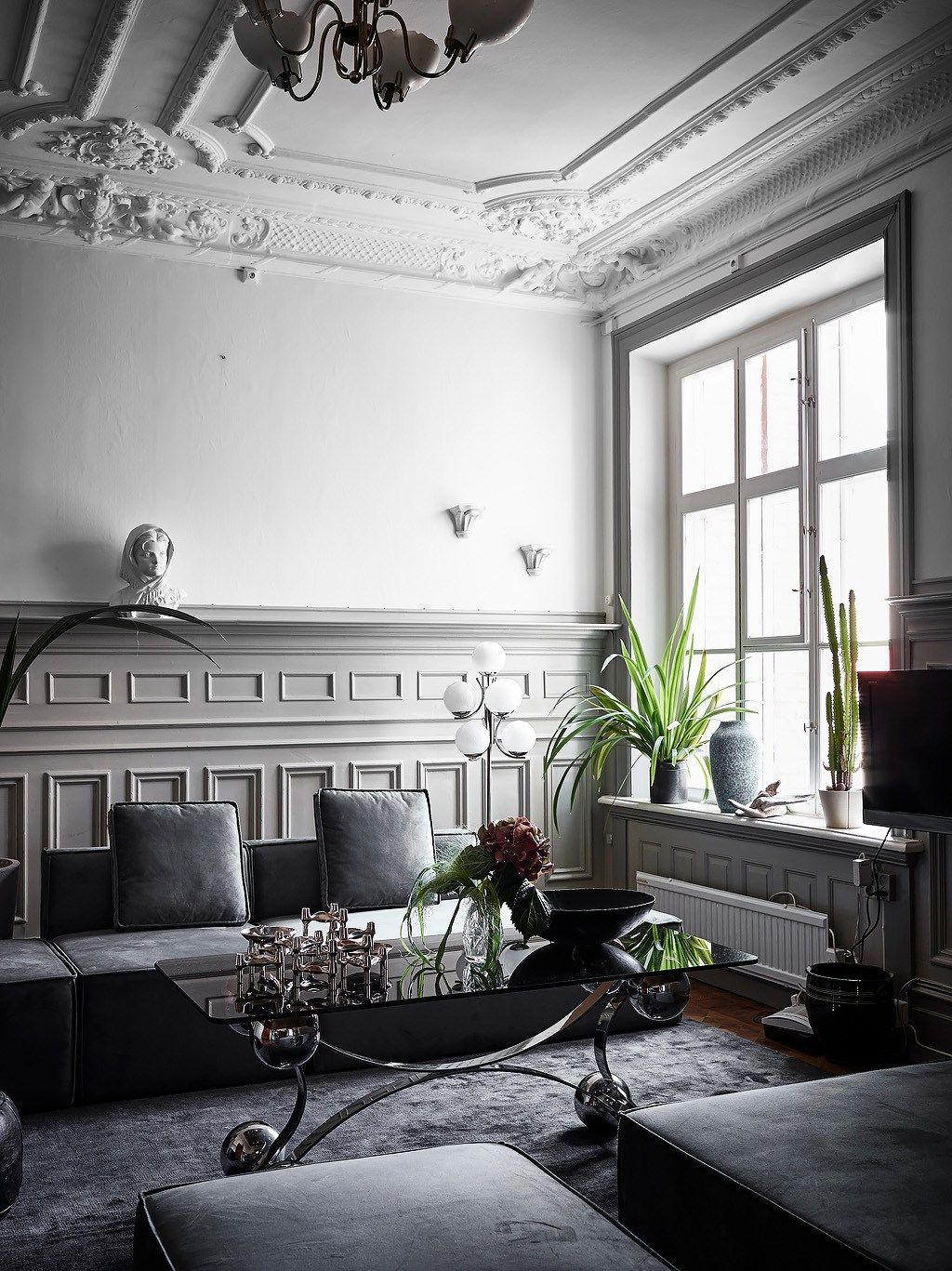 Indoor plants transform houses into luxurious spaces. We love the ...